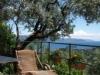 villa gnocchi - giardino10